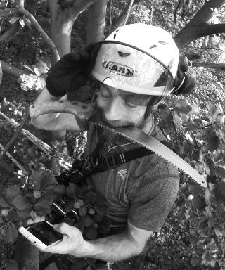 Baumpfleger Michael Steu im Baum